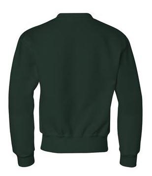 green youth crewneck sweatshirt, back view